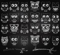 Chalkboard style vector set of cute owls and branches Stock Image