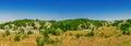 Chalky flora reservation in slavyansk ukraine Royalty Free Stock Images