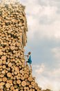 Challenge man climbing the large pile of logs Royalty Free Stock Images