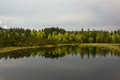 Chalupska slat forest mirroring in the lake panorama to Stock Photos