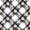 Chamomile seamless pattern. Daisies on retro white an d black Gingham Check background. Vector illustration.