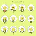 Chamomile stickers with emotions: love, kiss...