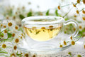 Chamomile tea Royalty Free Stock Photo