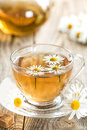 Chamomile tea herbal in a cup and fresh flowers Royalty Free Stock Photo