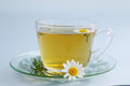 Chamomile tea herbal of drug healing drink Royalty Free Stock Image