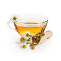 Chamomile tea herbal with flowers on white background Royalty Free Stock Image