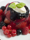 Champagne Berry Jelly with Clotted Cream Stock Photos