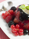 Champagne Berry Jelly with Clotted Cream Royalty Free Stock Photo