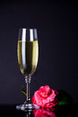 Champagne glass of with flower for valentine s day Royalty Free Stock Image