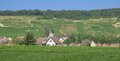 Champagne region near epernay france idyllic wine village surrounded by vineyards in the french Royalty Free Stock Images