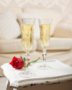 Champagne & Rose Royalty Free Stock Photo
