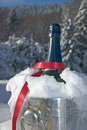 Champagne in snow Stock Image