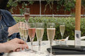 Champagne tasting Stock Photography
