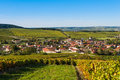 Champagne vineyards in the cote des bar aube area of department near to baroville ardennes france europe Stock Image