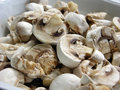 Champignon Royalty Free Stock Image