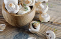 Champignon Stock Photo