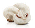 Champignon mushrooms white backround Royalty Free Stock Images