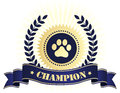 Champion seal with dog paw print elegant blue and golden stamp blue ribbon text and on center perfect for show things Stock Image