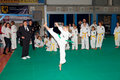 Championnats Taekwon-do Photographie stock libre de droits