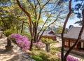 Changdeokgung, royal palace in Seoul, Secret garden Royalty Free Stock Photo