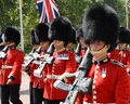 Change of the guard london some soldiers making daily in front buckingham palace in Royalty Free Stock Photo