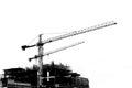 Chantier de construction avec des grues sur le fond de silhouette Photographie stock