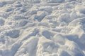 Chaotic tracks on the snow human fresh white Royalty Free Stock Photography