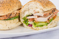 Char grill chicken sandwich breast slices honey mustard mayonnaise tomato cucumber and lettuce in a white bun with sesame seeds Stock Photography