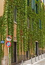 Characteristic street in Rome Royalty Free Stock Photo