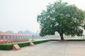 Charbagh or mughal garden in morning mist formal front of taj mahal agra Royalty Free Stock Image