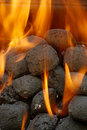 Charcoal barbecue briquettes Stock Image