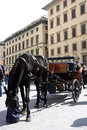 Chariot in the historical center of florence a thit horse italy horse has his head bag food Royalty Free Stock Image