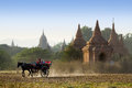 Chariots sight seeing in Bagan, Myanmar Royalty Free Stock Photo