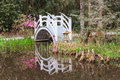 Charleston south carolina garden bridge reflection white ornamental arched with water along walking trail in outdoor natural Royalty Free Stock Images