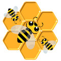 Charming bees sit on honeycombs