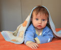 Charming blonde baby blue eyes covered blanket looking camera Royalty Free Stock Images