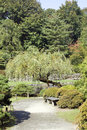 Charming Japanese garden Royalty Free Stock Photos