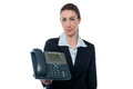 Charming lady holding telephone young female executive Stock Images