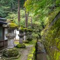 Charming scene of japanese stone lanterns with green moss with fresh green trees, background Royalty Free Stock Photo