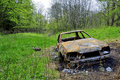 Charred car in the woods Royalty Free Stock Photo