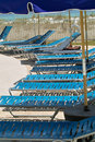 Chase lounges a row of blue matching sitting on the pools side in a tropical area Royalty Free Stock Image