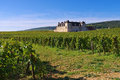 Chateau du Clos de Vougeot, Cote d`Or, Burgundy Royalty Free Stock Photo