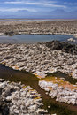 Chaxa Lagoon - Atacama Salt Flats - Chile Stock Photos