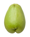 Chayote isolado Fotografia de Stock Royalty Free