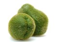 Chayote squash two on white background Stock Photo