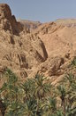 Chebika oasis in southern tunisia high temperatures the desert and no water Stock Image