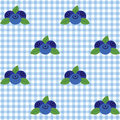 Checked pattern with blueberry vector seamless blue and white Royalty Free Stock Images