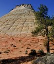 Checkerboard Mesa, Zion Royalty Free Stock Photo