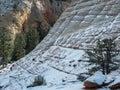 Checkerboard Mesa In Zion, A W...