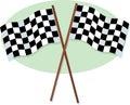 Checkered участвовать в гонке флагов Стоковые Фотографии RF